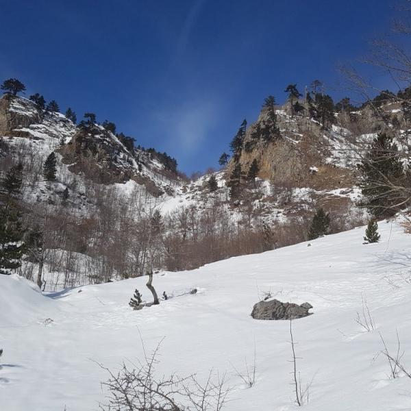 Starting up towards Jablanov Vrh.jpg